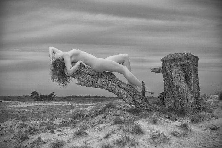 Copyright: Martin Krans
