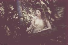 26daa-ella_trees1